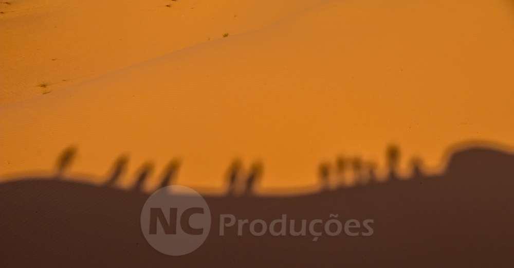 Fotografia Artistica Fotografia, Vídeo, Livestream Profissional